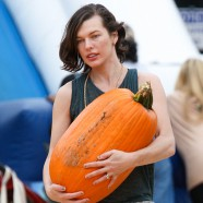 It's pumpkin patch time in Tinseltown