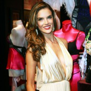 Alessandra Ambrosio models the $2.5 million Victoria�s Secret bra and she�s tickled pink!
