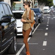 Alessandra Ambrosio wears brown